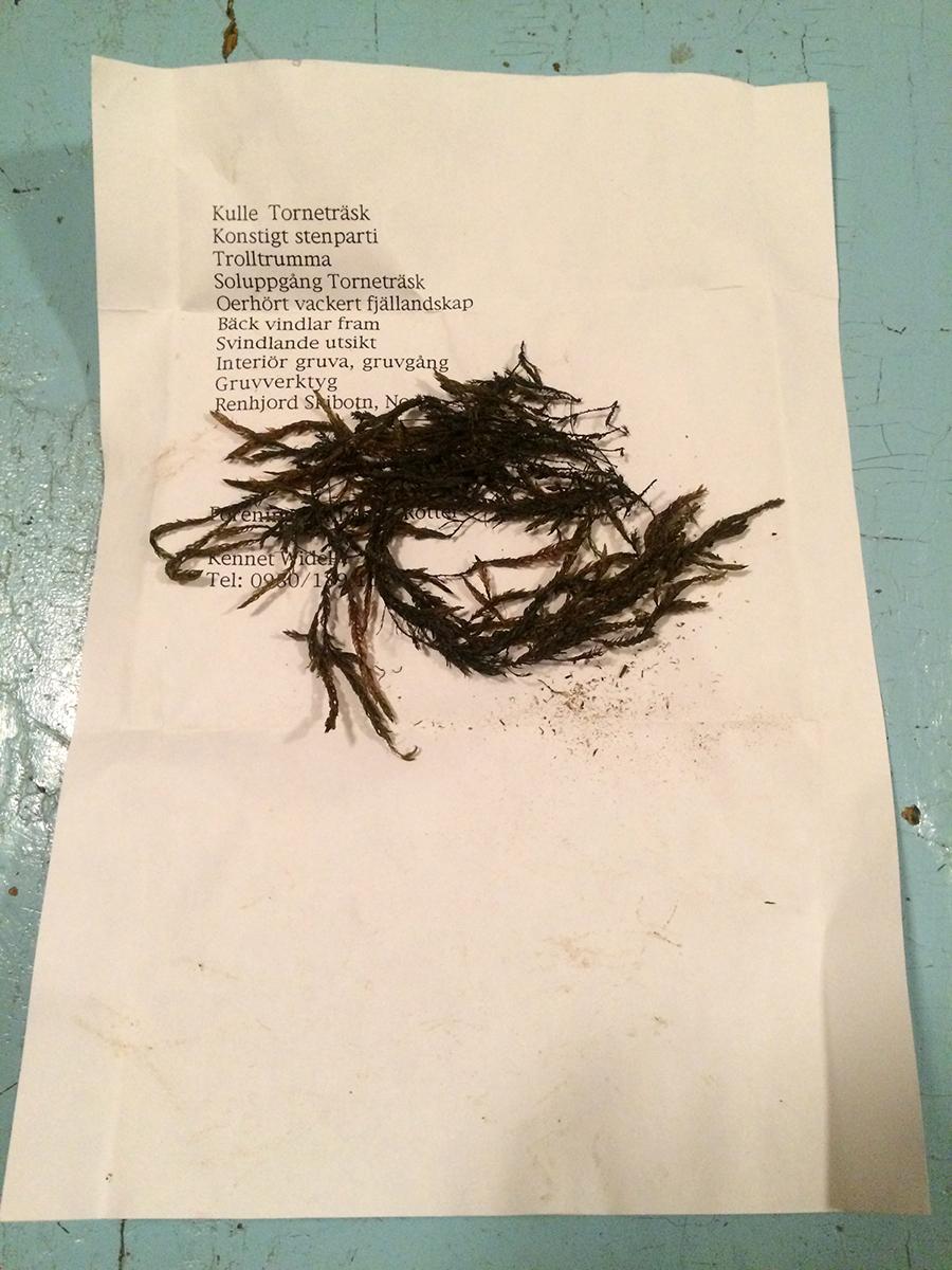 Fra Mossornas Vänners samling i Martissgården, Lainio. Photo: Ingvild Holm